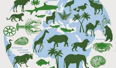 Có bao nhiêu loài sinh vật trên Trái Đất?