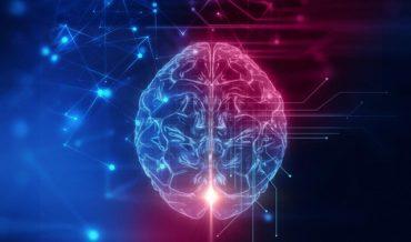 Bộ não con người vẫn hoạt động sau khi chết?