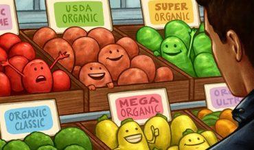 Sản phẩm hữu cơ có thực sự tốt? Thực phẩm lành mạnh hay xu hướng?